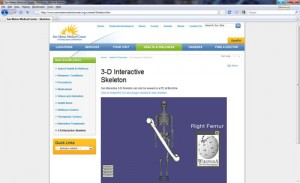 Web3d Bone Application