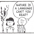A while back I wrote about a funny site that took Peanuts comics and replaced the text with random tweets.  Well some decided it would be a cool idea to do the same thing but instead replace text with lyrics from the Smiths.  Now, if you are not a full […]